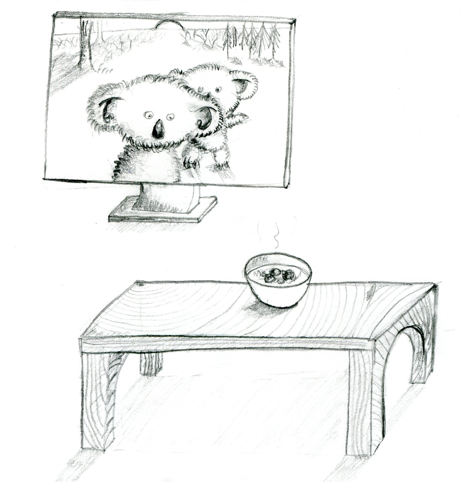 Day 8 - Koala on TV starring at a bowl of soup on a table.