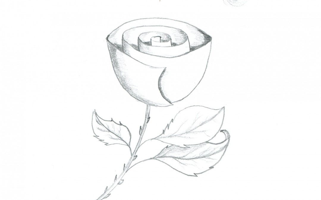 Day 9 - Rose