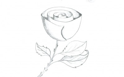 Day 9: The Rose